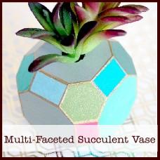 multi-faceted-succulent-vase