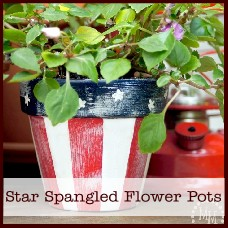 star-spangled-flower-pots