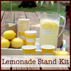 Lemonade-stand-kit