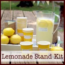 Lemonade-stand-kit
