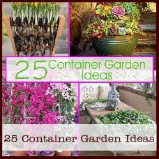 container-garden-ideas