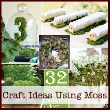 moss-craft-projects