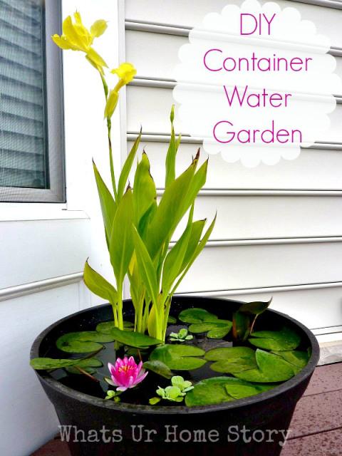 DIY-Water-Garden1