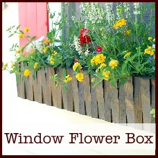 window-flower-box