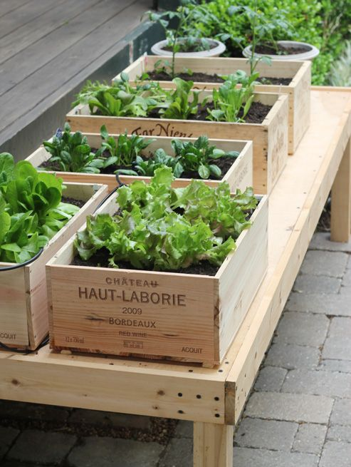 wine crate garden planter