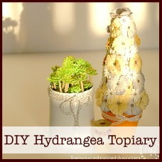 DIY Hydrangea Topiary