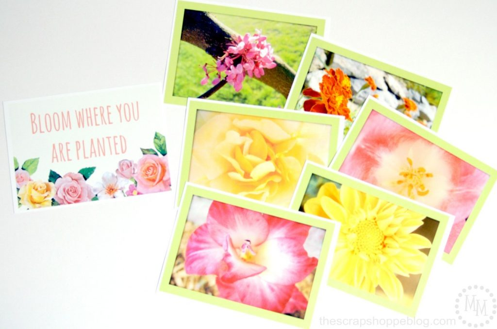Floral Photo Banner