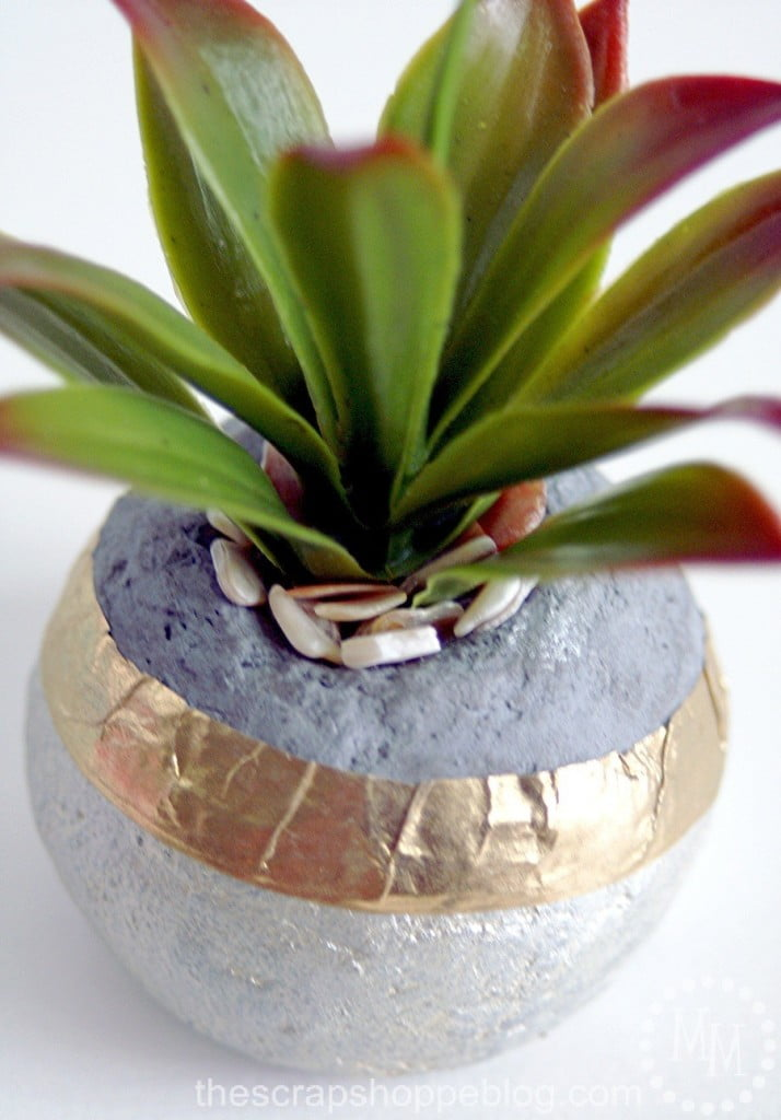 seashell-filler