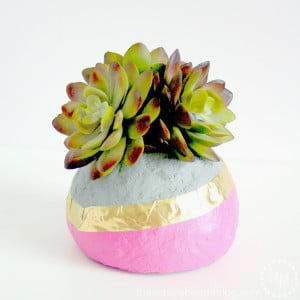 Faux Concrete Dipped Succulent Planters - you won't believe what these are made from!