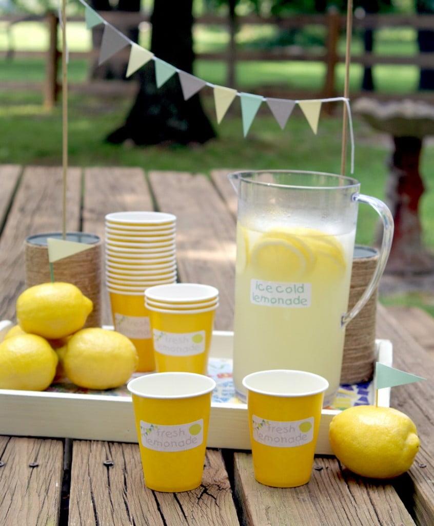 Summer Lemonade Stand kit