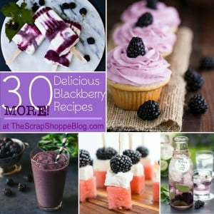 30 {MORE!} Delicious Blackberry Recipes