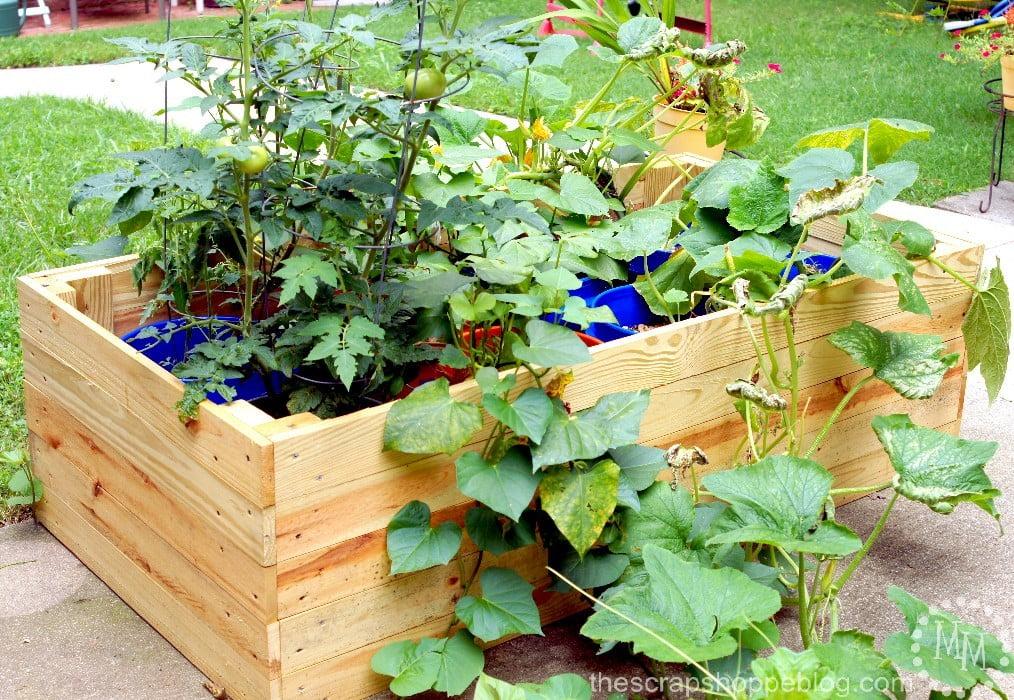 DIY Container Garden Enclosure