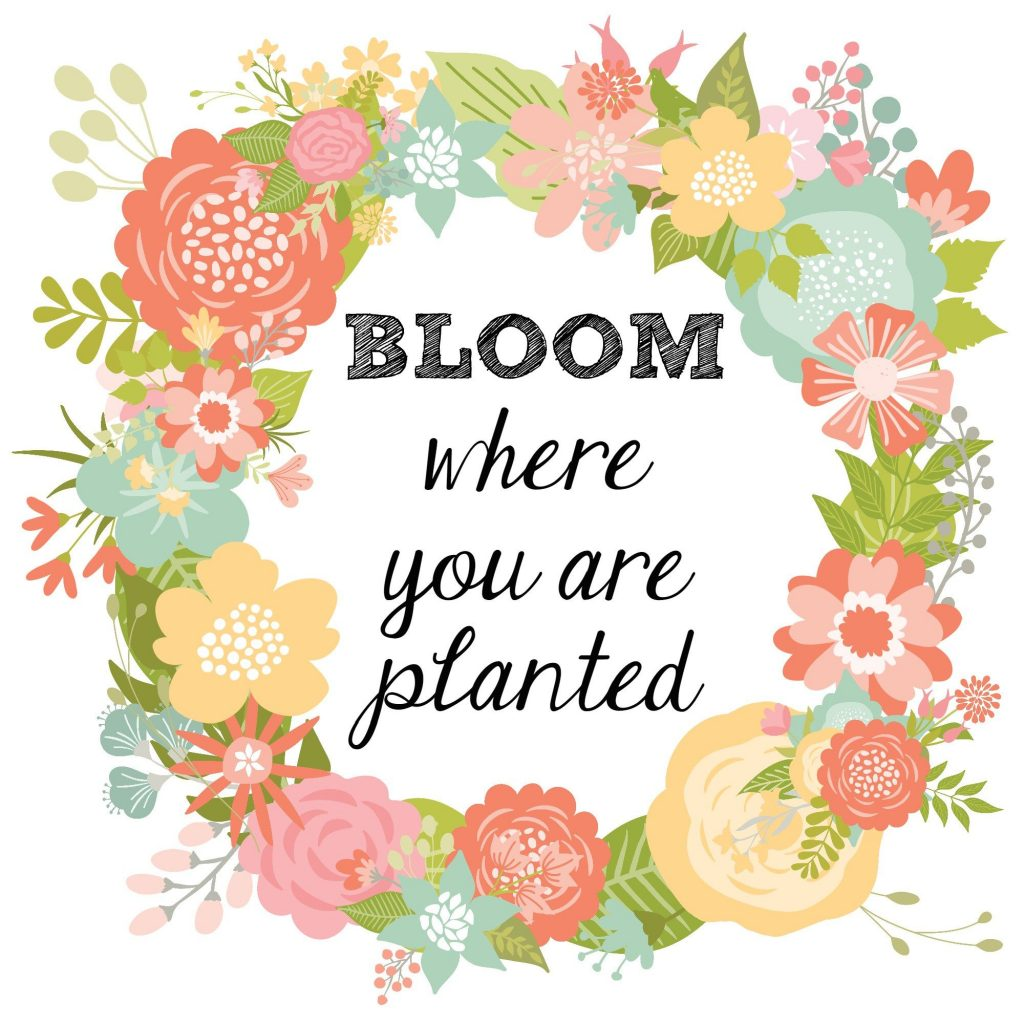 Bloom Where You are Planted Spring Print