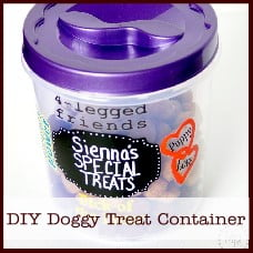 diy-doggy-treat-container