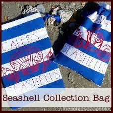 seashell-collection-bag