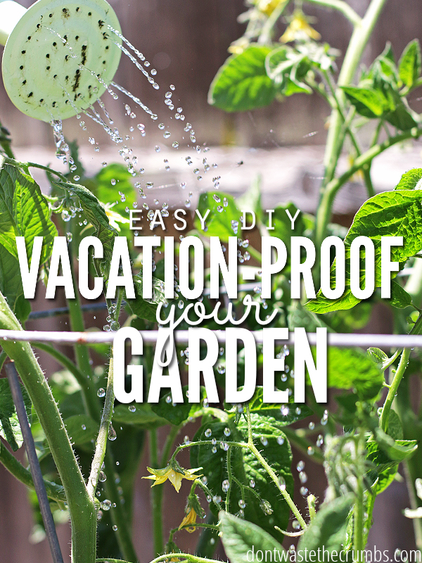 Use these tips to create the PERFECT garden!