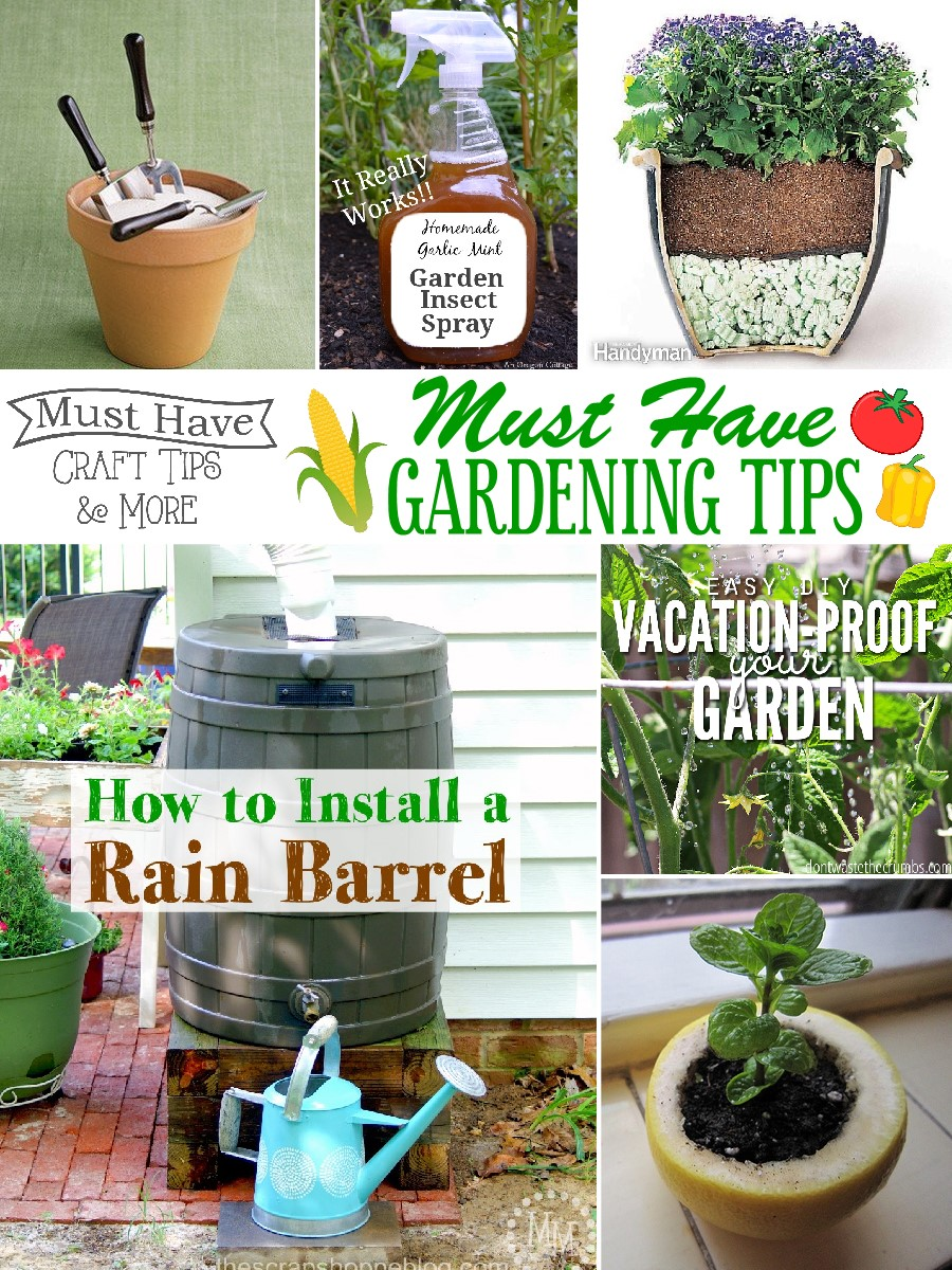 Must have gardening tips the scrap shoppe for Gardening advice