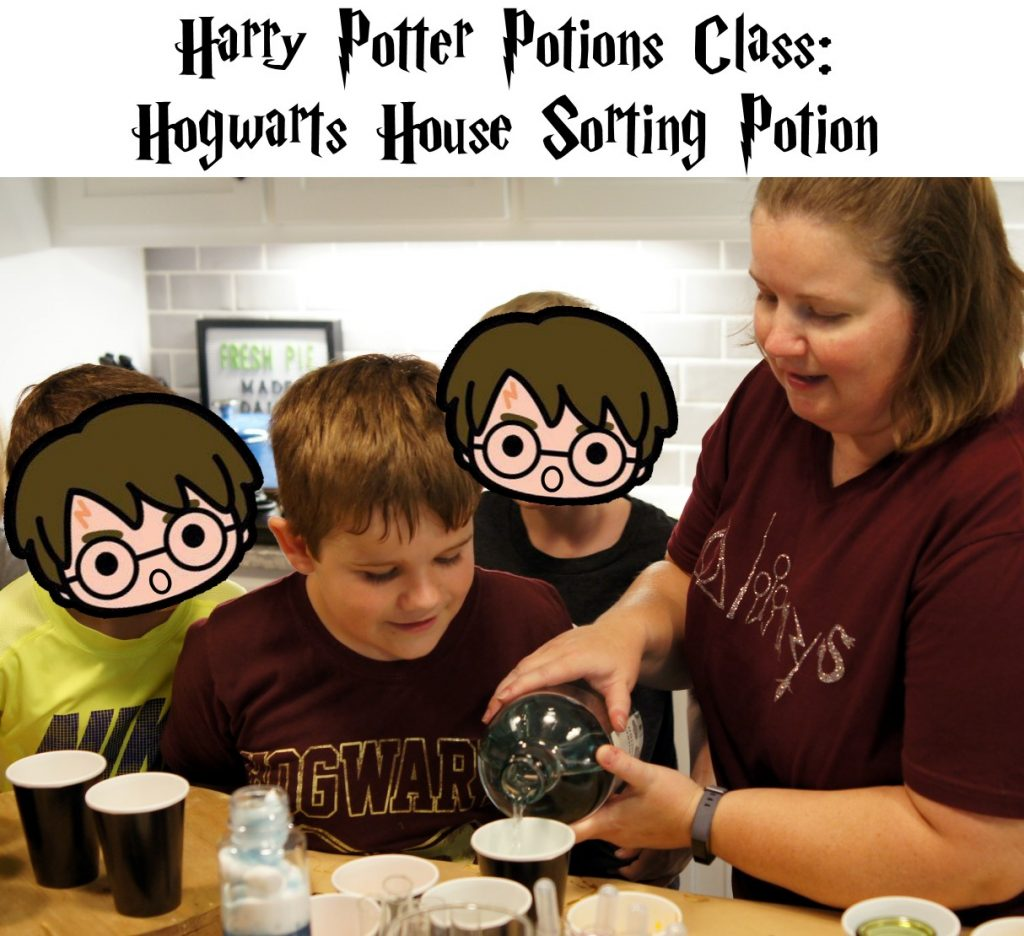 Harry Potter Potions Class Hogwarts House Sorting Potion